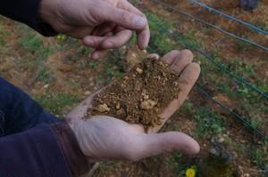 calendrier lunaire amélioration des sols terre à améliorer