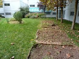 Son jardin potager sur des sites probl mes for Jardin lunaire