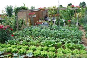nature et jardin calendrier