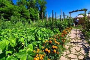 Jardin potager comment jardiner avec la lune for Calandrier lunaire pour le jardin