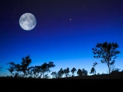calendrier lunaire nature pleine lune jardin