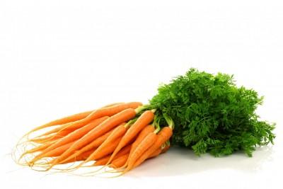 calendrier lunaire nature jardin botte de carotte