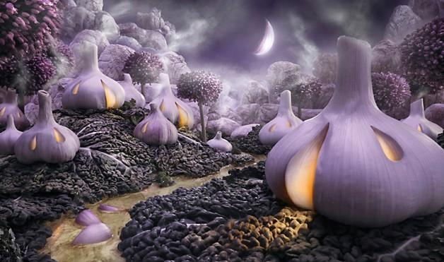 calendrier lunaire du 13 mars ail violet lune