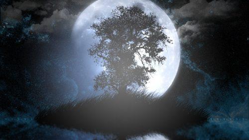 calendrier lunaire du 20 mai