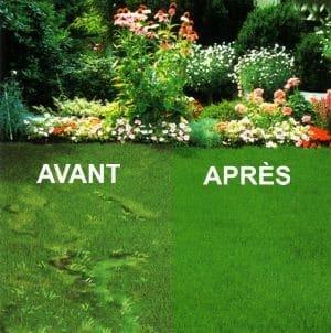 Toutes les infos pour bien entretenir votre pelouse for Entretien gazon printemps
