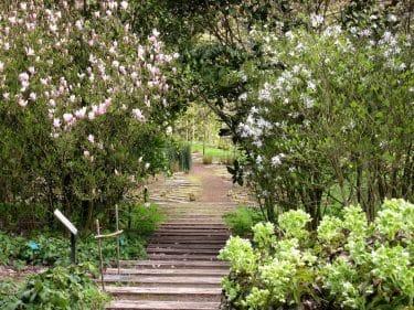 calendrier lunaire jardin du 2 aout