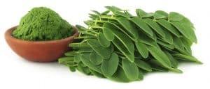 calendrier lunaire vertus du moringa