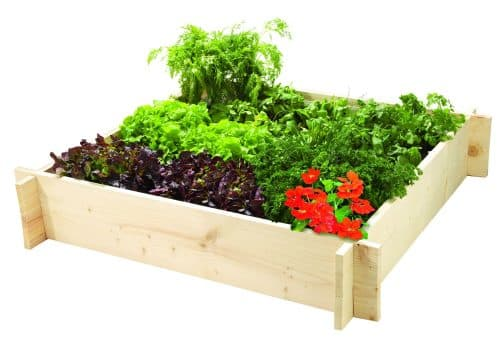 jardiner sans labourer potager en carre