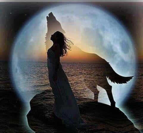 calendrier lunaire inscrits alerte prochaine pleine lune