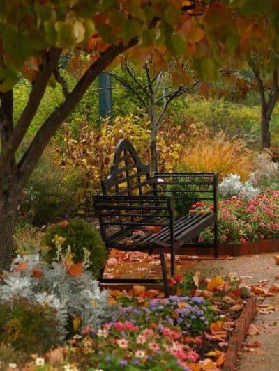 calendrier-lunaire-jardin-du-27-octobre