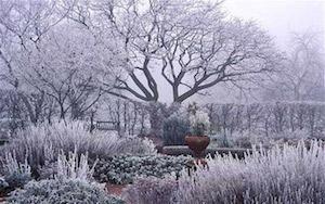 calendrier lunaire jardiner avec la lune decembre 2016