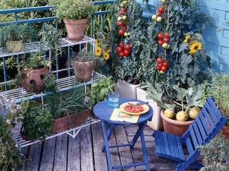 calendrier lunaire jardinière