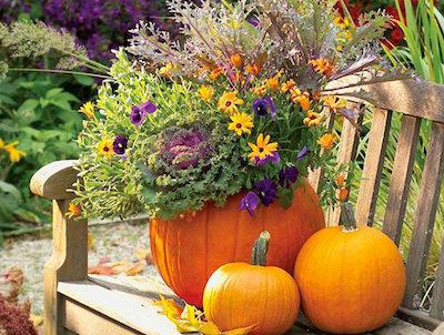 jardiner avec la lune 2018 - octobre