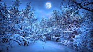 calendrier lunaire - jardiner avec la lune 2020 - janvier