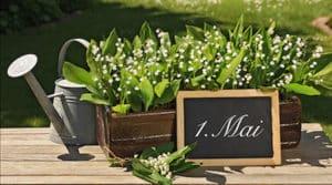 calendrier lunaire - calendrier lunaire jardin 2020 - mai