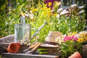 calendrier lunaire - jardiner avec la lune 2020 - juin